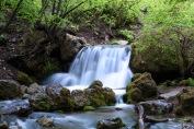Right Hand Fork Canyon | Logan Canyon UT